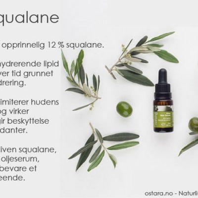 Squalane – den magiske hemmelige ingrediensen